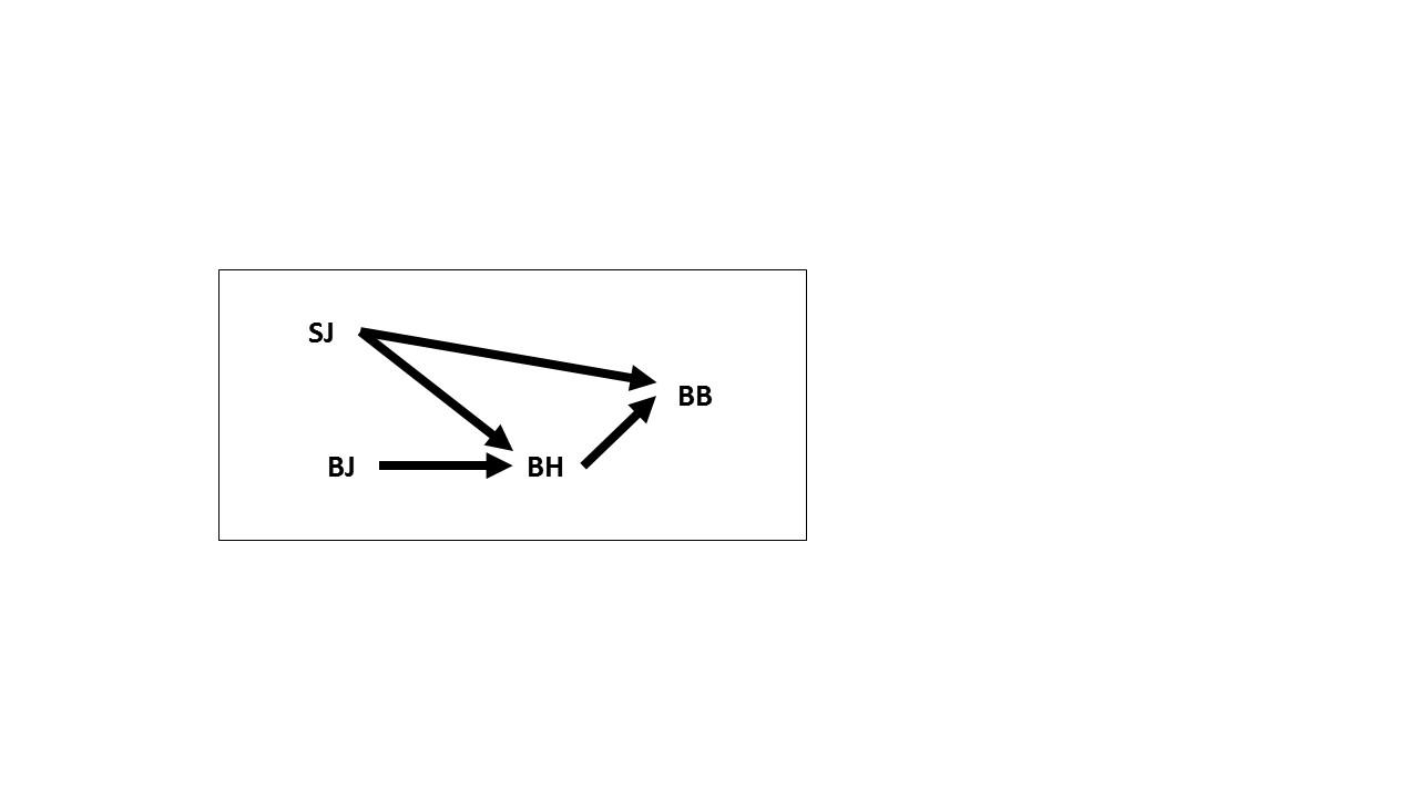 C:\Users\Thomas Blanchard\Dropbox\Research\Encyclopedie Philosophique\GraphSuzy\Slide1.JPG